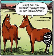 Hip Replacement Surgery 2019